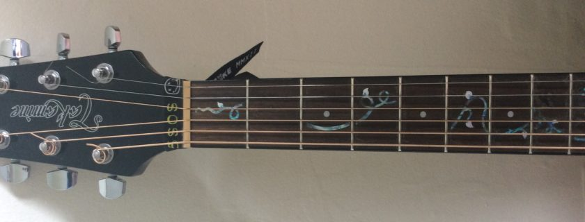 How To Clean a Guitar and Fretboard